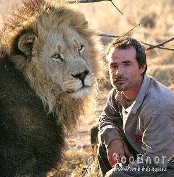 В гостях у львов (11 фото)
