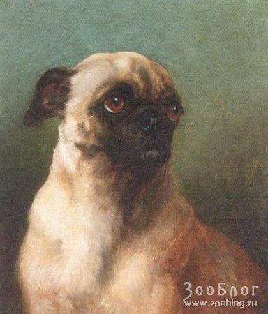 Картины William Henry Hamilton Trood (1860-1899)