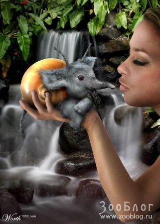 Несуществующие животные