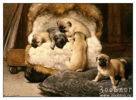Картины Otto Eerelman