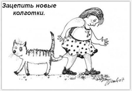 Обязанности кошки в доме =)