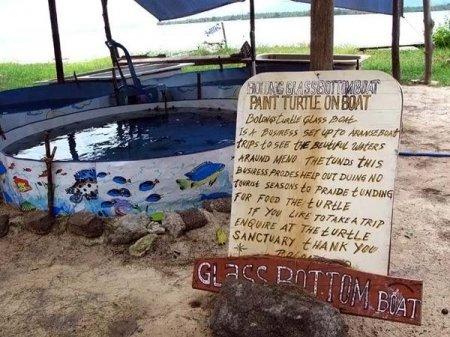 Черепаший питомник острова Гили