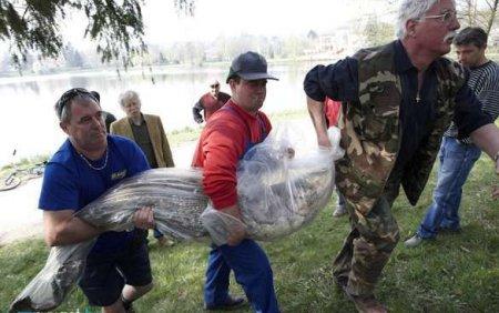 Рыбка на 50 кг