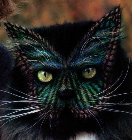 Бодиарт для кошек