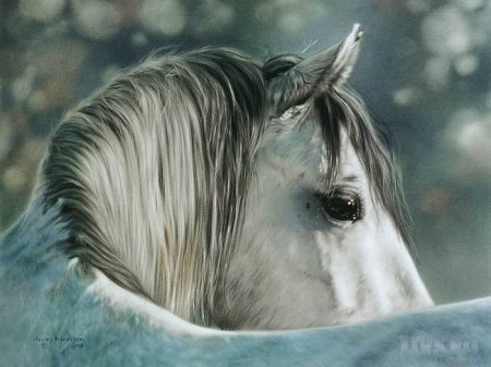 Животные художника Lesley Harrison