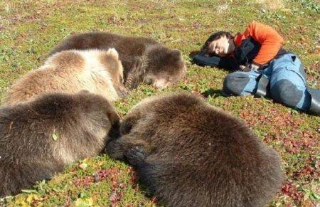 Дружелюбные медвежата