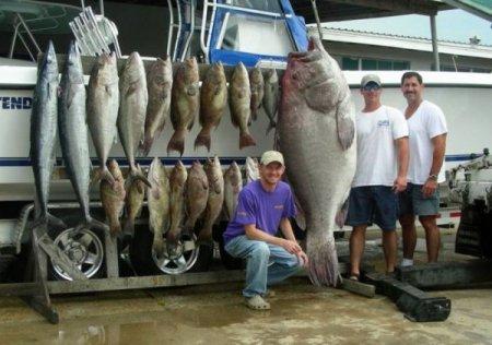 Мега улов