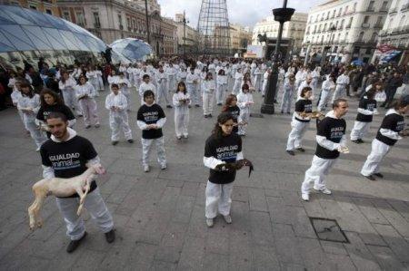 Акция защитников животных в Мадриде