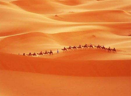 Корабли пустынь