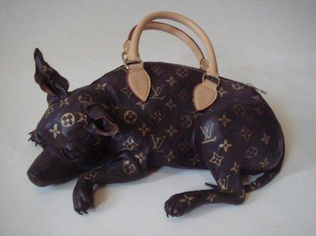 Странная и ужасная сумка