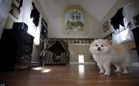 Мини-особняк для собачки