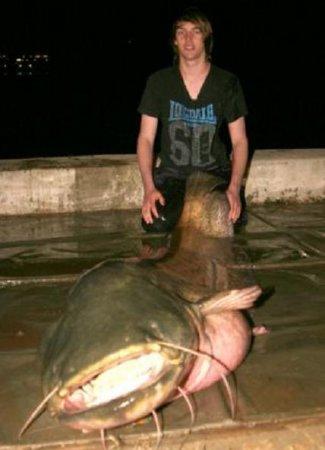 Студент поймал рыбку
