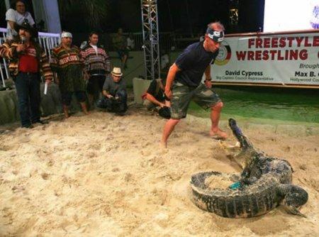 Борьба с крокодилом