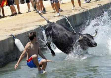 Бег с быками