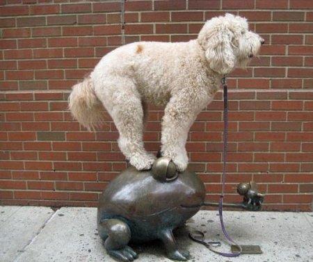 Пёс-балансир