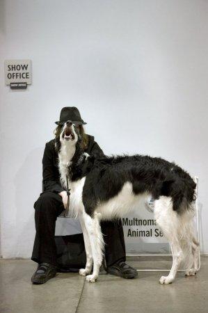 В «Rose City Classic» прошла выставка собак