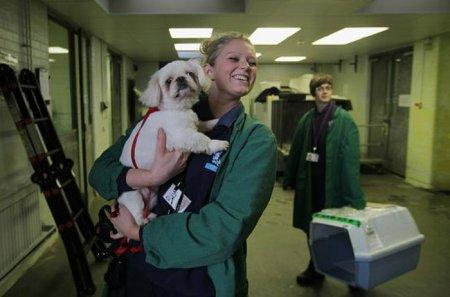 Ветеринарный центр в аэропорту Лондона