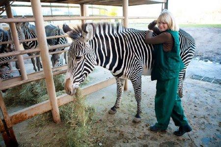 Экскурсия по зоопарку Crazy zoo