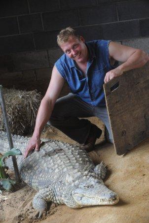 Британский фермер разводит нильского крокодила