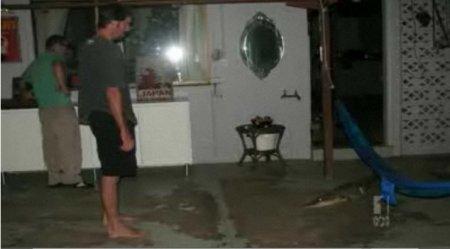 Австралийская семья обнаружила в своём доме крокодила