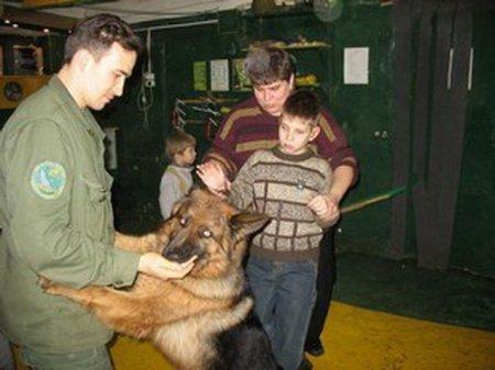 Детей из Петербурга лечат собаки