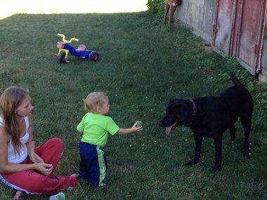 Пес спас тонущего ребенка