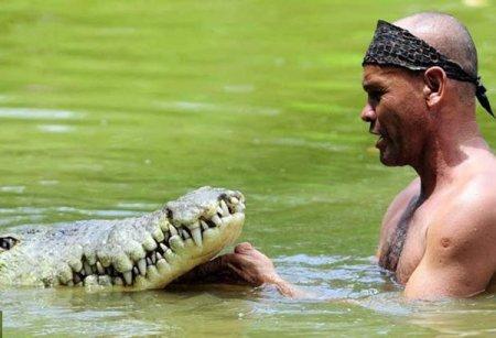 Дрессированный крокодил