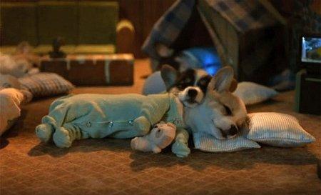 Зверушки в пижамках