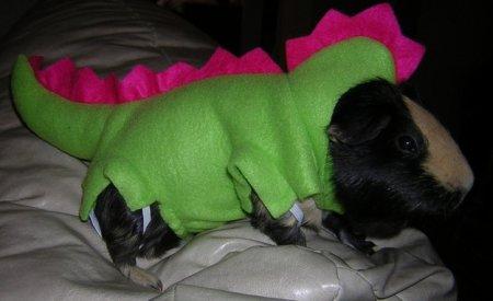 Животные в костюме динозавра