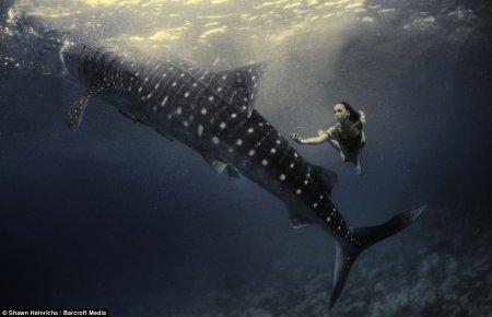 Уникальная подводная фотосессия моделей в компании китовых акул