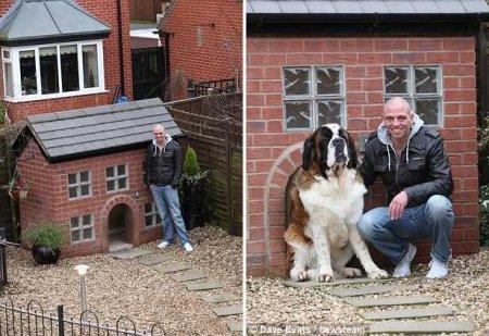 Собачья будка – точная копия дома хозяина (8 фото)