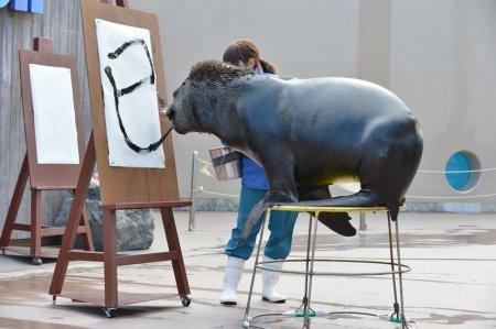 Каллиграфические способности морского льва по кличке Джей (4 фото)