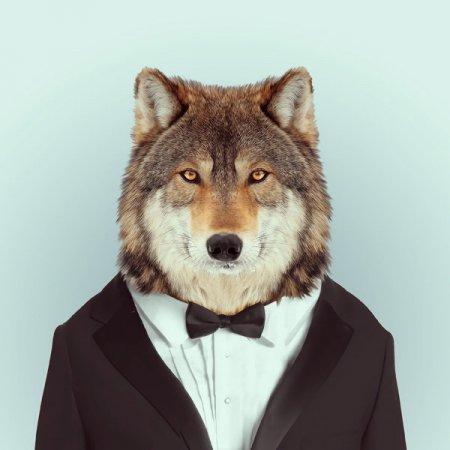 """Одетые животные в проекте """"Зоопортреты"""" (10 фото)"""
