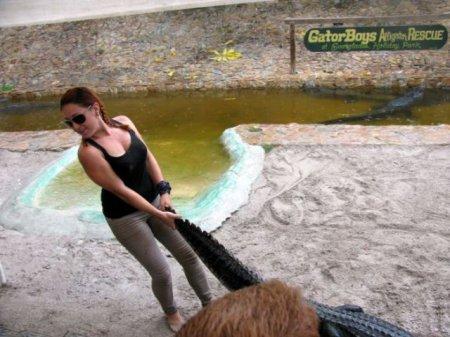 Эшли Лоуренс – укротительница аллигаторов (10 фото)