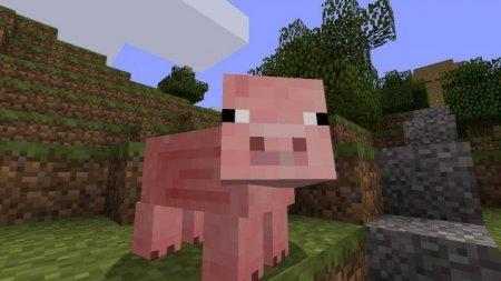 Топ-10: Интересные факты о свиньях