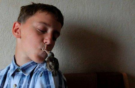 Неразлучные друзья: 12-летний мальчик Вадим и воробей Аби (5 фото)