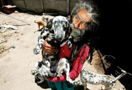 «101 Далматинец» Диснея вдохновил любителя собак завести как можно больше пятнистых псов