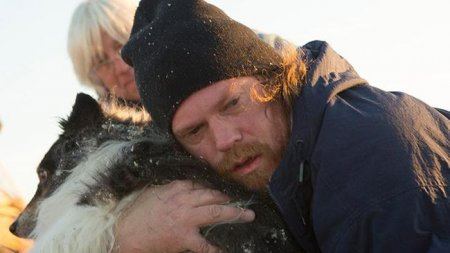 Мужчина нашёл своего четвероногого друга после урагана (9 фото)