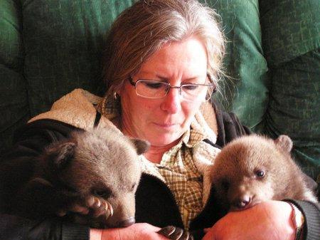 Пара приютила двух медвежат, брошенных их матерью (9 фото)