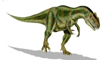 Топ-25 Поразительных доисторических хищников