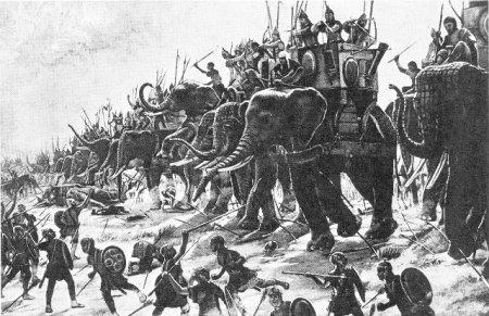 Топ-10 Уникальных способов, с помощью которых животных использовали в ходе войн