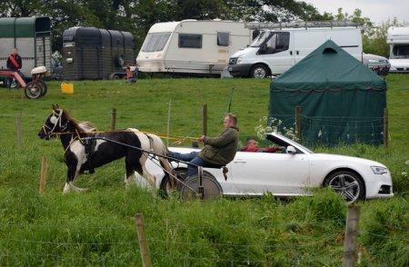 Ежегодная конная ярмарка в Эпплби (12 фото)