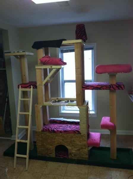 Кошачья башня своими руками (15 фото)
