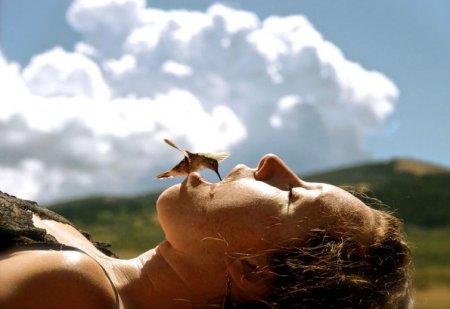 Великолепные колибри через объектив фотографа Криса Моргана (12 фото)