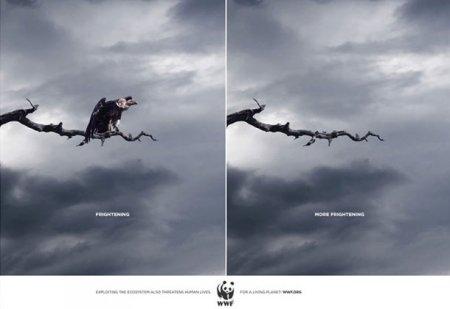 Топ-25 шокирующих рекламных кампаний, посвященных животным