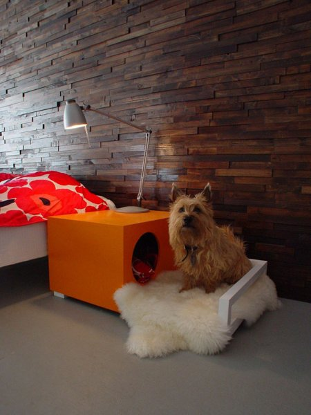 Оригинальные игрушки и приспособления для собак (23 фото)