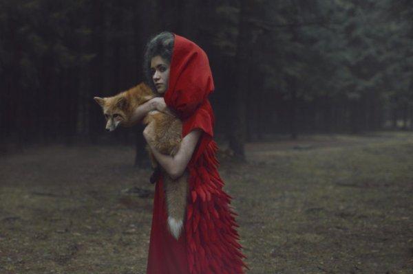 Фотограф Катерина Плотникова (18 фото)