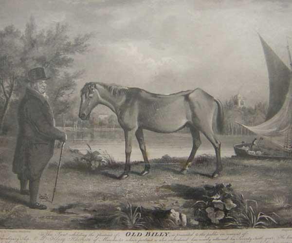 Лошадиные рекорды