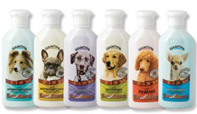 Оригинальные подарки для домашних животных и их владельцев
