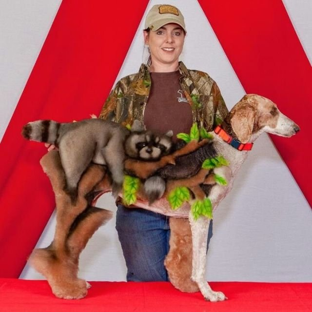 Невероятный груминг собак (25 фото)